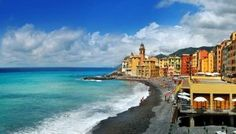 CAMOGLI : THE FESTIVAL OF BLUE FRIED FISH  For your holiday in Camogli and Golfo Paradiso ,the best online travel agency for Liguria is Liforyou: www.liforyou.it