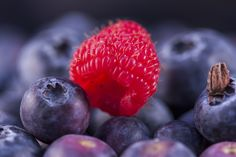 Blueberry, Fruit, Food, Blueberries, Meal, The Fruit, Eten, Meals