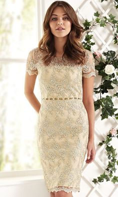 The Gina Bacconi collection of special occasion outfits and dresses ideal for weddings, ascot and every day - available at Fab Frocks Bournemouth Dorset Special Occasion Outfits, Groom Outfit, Holiday Dresses, Fashion Company, Frocks, Mother Of The Bride, Wedding Dresses, Wedding Outfits, Dress Outfits
