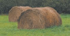 Moisture poses problem for hay