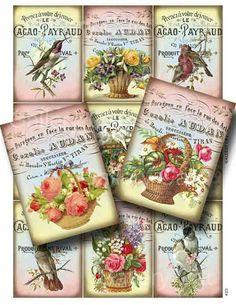 Victorian Birds and Baskets Digital Collage Sheet Instant