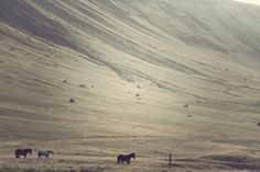 Iceland On The Behance Network, curated by Christophe on Buamai.