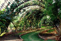 This very beautiful and green arch is not a 3D Illustration, it's the entrance to Naandi's Medicinal Plantation. We @ Organo want to make everyday a green day - a day that is filled with all Nature's goodness and beauty. That is why all our projects are eco-friendly, organic, and pro-outdoor and passive health. This, we feel, is what defines true luxury.