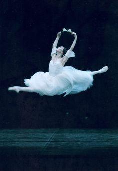 Giselle w/ Romanian ballerina Alina Cojocaru - 'that matinée performance (Feb 2011) was legendary' http://www.pinterest.com/melissaktznbrgr/alina-cojocaru/
