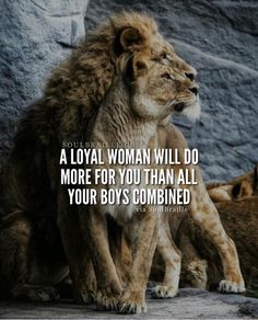 Funny Life Quotes To Live By Wisdom Truths 55 Ideas Lioness Quotes, Wolf Quotes, Animal Quotes, Faith Quotes, Wisdom Quotes, True Quotes, Leo Quotes, Life Quotes To Live By, Funny Quotes About Life