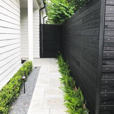 Easy and Cheap Backyard Fence Design Ideas Part 23 ; backyard fence ideas for dogs;