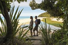 Abel Tasman National Park boasts a golden sand sheltered coastline, crystal clear turquoise waters and the Tonga Island Marine Reserve.