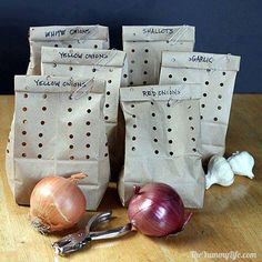 """How to store your garlic, onions and shallots so they can LAST FOR MONTHS!  Instructions: 1. Make sure onions, garlic etc... are firm and blemish free. I 2. Use brown lunch paper bags 3. a hole punch 4. Paper clips--for holding the bag closed  How to make: 1. Punch the bags.Fold the bag in half lengthwise, punch along one edge;Flip the folded bag over and punch along the other edge; approximately 1"" between punches (but it doesn't have to be perfect). The result is multiple rows of..."