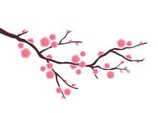 Cherry Blossom Branch Vector - Download From Over 58 Million High Quality Stock Photos, Images, Vectors. Sign up for FREE today. Image: 40027106