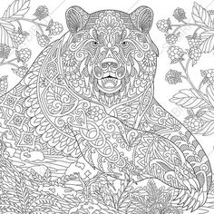 Wild Grizzly Bear Coloring Page. Adult by ColoringPageExpress