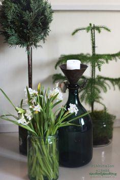 Sydäntalven väritys olohuoneessa on hillityn pellavainen maustettuna vihreällä. Decor, Glass Vase, Glass, Home Decor, Vase
