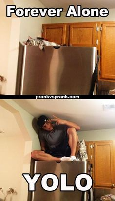 hahaha!Gotta love Jesse and Jeana and their cat Nylah!