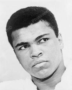 Muhammad Ali Youthful Portrait 8x10 Reprint Of Old Photo