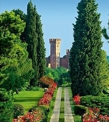 Travel Inspiration for Italy - Sigurtà Park, near Verona and Lake Garda, Italy is considered one of the 5 most beautiful gardens in the world. See the Asters in bloom in September. Places Around The World, The Places Youll Go, Places To See, Around The Worlds, Italy Travel, Italy Trip, Vacation Spots, Dream Vacations, Beautiful Gardens