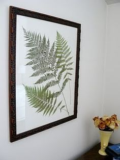 Pressed fern wall art