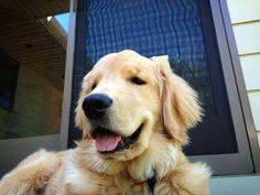 Ray Charles enjoying the outdoors
