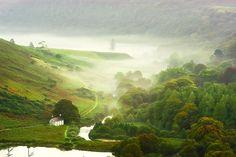 Misty Morning in Ireland