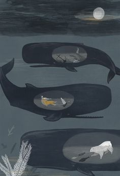 Beautiful, charming whale illustration by Alice Ferrow.  http://aliceferrow.tumblr.com/