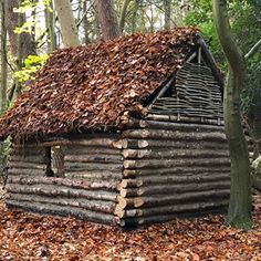 I don't think we've ever asked for suggestions from you all but we're curious to know... What should we do next?! There's already a re-design to the chimney/fire happening soon but what would you like to see us do? Comment below! #hiking #walking #camping #hammockcamping #hammock #hammocking #shelter #woodland #woods #Bushcraft #nature #knife #knives #axe #survival #outdoors #den #camp #fireden #denbuilding #campfire #bandlbushcraft #fire #survival #survivalshelter #forest #logcabin
