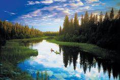 Pferdewagen, Kanu, Hundeschlitten: Die kanadische Provinz Saskatchewan erforscht man am besten mit traditionellen Verkehrsmitteln. So können Urlauber inmitten spektakulärer Natur Pelikan, Biber und Bisons beobachten. Nur am See der hängenden Herzen kommt man nicht ohne Hightech aus.