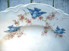 Vintage bluebird plate