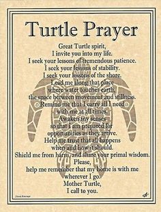 Spirit of Stability and Patience,TURTLE. TURTLE is a gift from the Great Spirit. Treat it with respect. Great for your Sacred Space when seeking patience and stability. seeks its noble wisdom in solit Turtle Spirit Animal, Animal Spirit Guides, Turtle Symbolism, Turtle Quotes, Animal Meanings, Turtle Time, Book Of Shadows, Me Quotes, Night Quotes