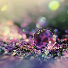 Chameleon… by ~goRillA-iNK, macro of water droplet on glitter creates magic looking lighting, purple, lavender, green, blue, sparkles