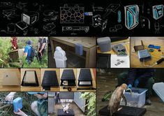 Yellow eyed penguin monitoring system - BEST AWARDS Weighing penguins might help save their lives - Postgraduate Product Design students Ian McDowall and Francis Bingham worked on producing a weigh station that would be positioned just outside a nest. Yellow Eyes, Product Design, Penguins, Nativity, Nest, Awards, Students, Technology, Life