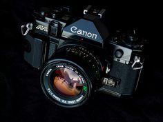 Canon A1 | Flickr: Intercambio de fotos