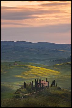 "Tuscany - Is it really this beautiful everywhere? ...I even love the ""creepy Italian trees"".  ^.^"