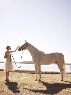 a pretty dress + a pretty horse