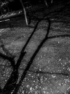 "©Sin titulo, de la serie: ""Paisaje nocturno"" 25 de Agosto de 2013 Campeche, Camp; México."