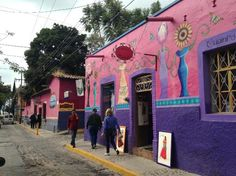 House Sitters Needed Aug 14, 2017 Short Medium Term Ajijic Jalisco Mexico
