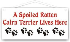 A Spoiled Rotten Cairn Terrier Lives Here