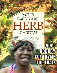 "Another one made by my friend Jon. Backyard Herb Garden. ""Ain't nobody got THYME for that!"""