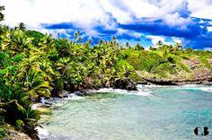 Toco, Trinidad & Tobago W.I
