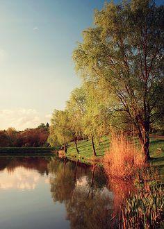 Farkasvölgyi tó, Nagybörzsöny