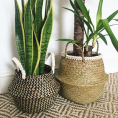 Seagrass belly basket with crochet rope trim