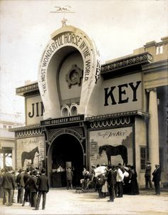 Jim Key, The Educated Horse on the Pike at the 1904 World's Fair.