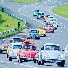 _____ www.hammeredapparel.com | link in bio | worldwide shipping _____ #hammeredapparel #aircooled #vwlove #vw #vdub #Volkswagen #vwporn #vintage #vintagevw #vintagevdub #beetle #vocho #vwmafia #vwbus #vwbug #vwlife #slammed #vwnation #vwbeetle #vwvan #vwvortex #baywindow #stanced #kombi #classicvw via @hammered_apparel