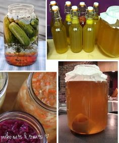 Make Your Own Fermented Foods