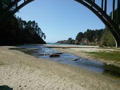 State Parks, Surfboard, Camping, Travel, Campsite, Voyage, Trips, Viajes, Destinations