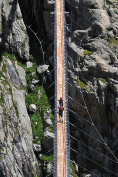 one of the Alps' longest and highest pedestrian suspension bridge Rope Bridge, Alien Worlds, Pedestrian Bridge, Suspension Bridge, Walk This Way, New Perspective, Covered Bridges, Top Of The World, See Picture