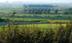 Noordpolder van Ossendrecht.  Geniet aan de voet van de Brabantse Wal van het uitzicht over deze mooie polder. Zoek vanaf het uitkijkpunt het landschap af naar een fazant en wandel langs oude sloten, akkers en knotwilgen.  https://www.natuurmonumenten.nl/natuurgebieden/noordpolder-van-ossendrecht