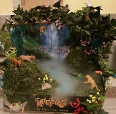 Tropical rainforest Diorama