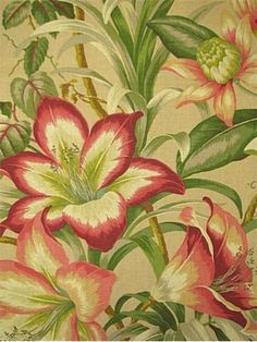 Tommy Bahama Fabric, tropical hibiscus floral print fabric, multi purpose, 100% cotton canvas, ideal for window treatments (draperies, valances, curtains, and swags), duvet covers, pillow shams, accen