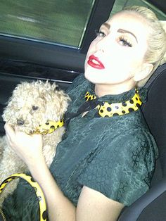 Lady Gaga & her #dog Fozzi