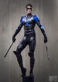 Nightwing - Shawn Webber