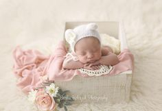 """153 curtidas, 3 comentários - Cecilia Koloszuk (@ceciliakoloszukphotography) no Instagram: """"#newbornphotographer #newbornphoto #newbornphotography #fotografianewborn #fotografiaderecemnascido…"""""""