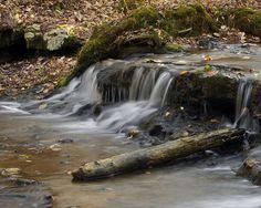 Shoals Creek Preserve Florence, Alabama